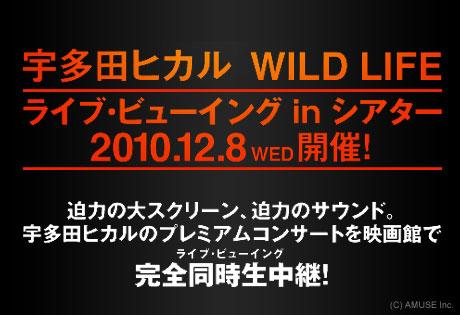 「宇多田ヒカル WILD LIFE ライブ・ビューイング」開催決定!