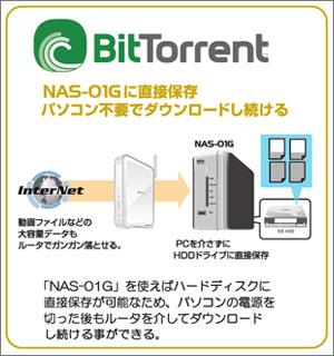 NAS-01G750_2.jpg