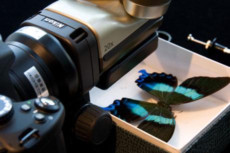 『Nikon Digital Live 2010』で「D7000」に触れてきやした