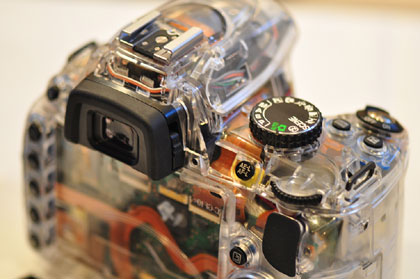 「Nikon D5000」予告??