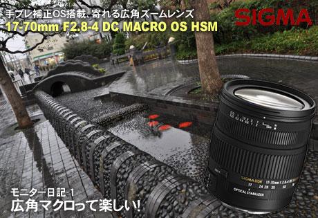 広角マクロって楽しい!「SIGMA 17-70mm F2.8-4 DC MACRO OS HSM」モニター日記-1