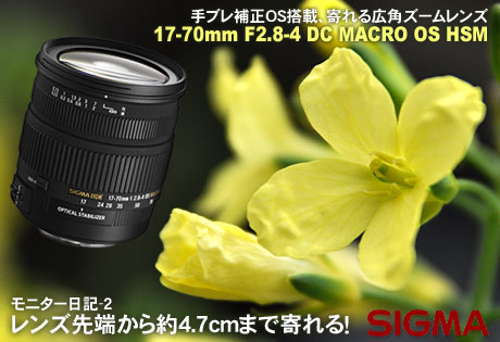 レンズ先端から約4.7cmまで寄れる!「SIGMA 17-70mm F2.8-4 DC MACRO OS HSM」モニター日記-2