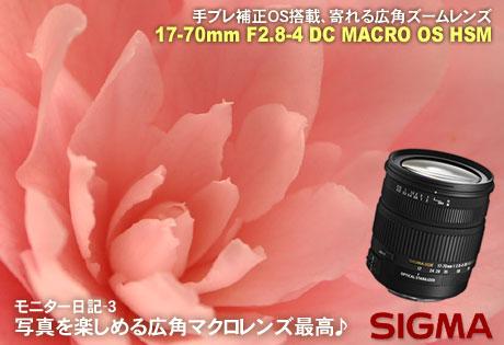 癒される広角マクロレンズ「SIGMA 17-70mm F2.8-4 DC MACRO OS HSM」モニター日記-3