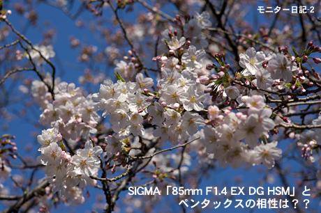 SIGMA「85mm F1.4 EX DG HSM」と、ペンタックスの相性は??:モニター日記-2