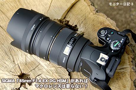 SIGMA「85mm F1.4 EX DG HSM」があれば、マクロレンズは要らない?:モニター日記-3