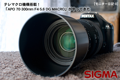 テレマクロ機構搭載、SIGMA「APO 70-300mm F4-5.6 DG MACRO」がやってきた
