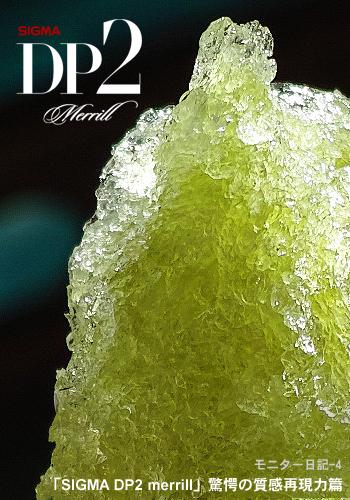 DP2 merrillモニター日記-4:「SIGMA DP2 merrill」驚愕の質感再現力篇