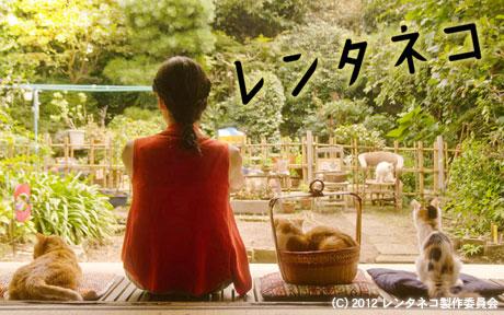 「かもめ食堂」の荻上直子監督の新作は「レンタネコ」5月公開!