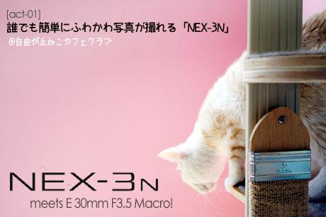 「NEX-3N」なら、誰でも簡単にふわかわ写真が撮れるのだ