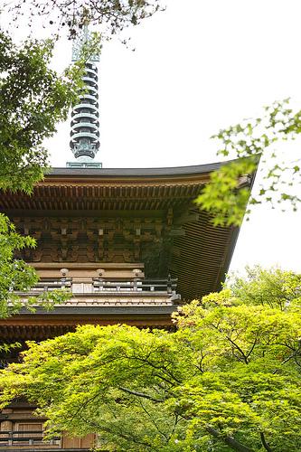 「SIGMA DP3 Merrill」と行く世田谷線・豪徳寺(モニター日記-2)