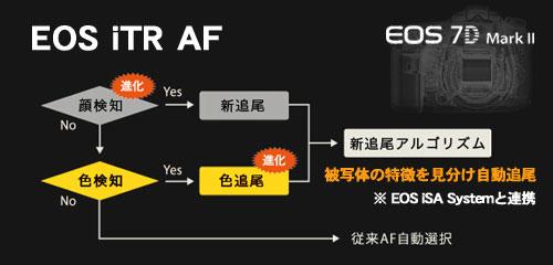 一瞬を逃さない、進化した7D誕生!「EOS 7D Mark II」を体感してきた:モニター日記-0