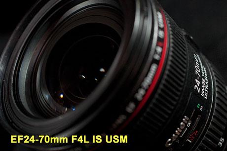 EF24-70mm F4L IS USM でマクロ撮影篇:EOS 7D Mark II モニター日記-1