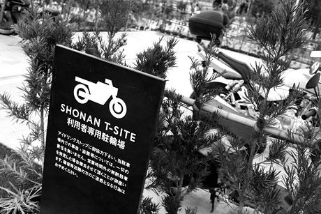 湘南に新しい蔦屋書店がオープン!SHONAN T-SITE